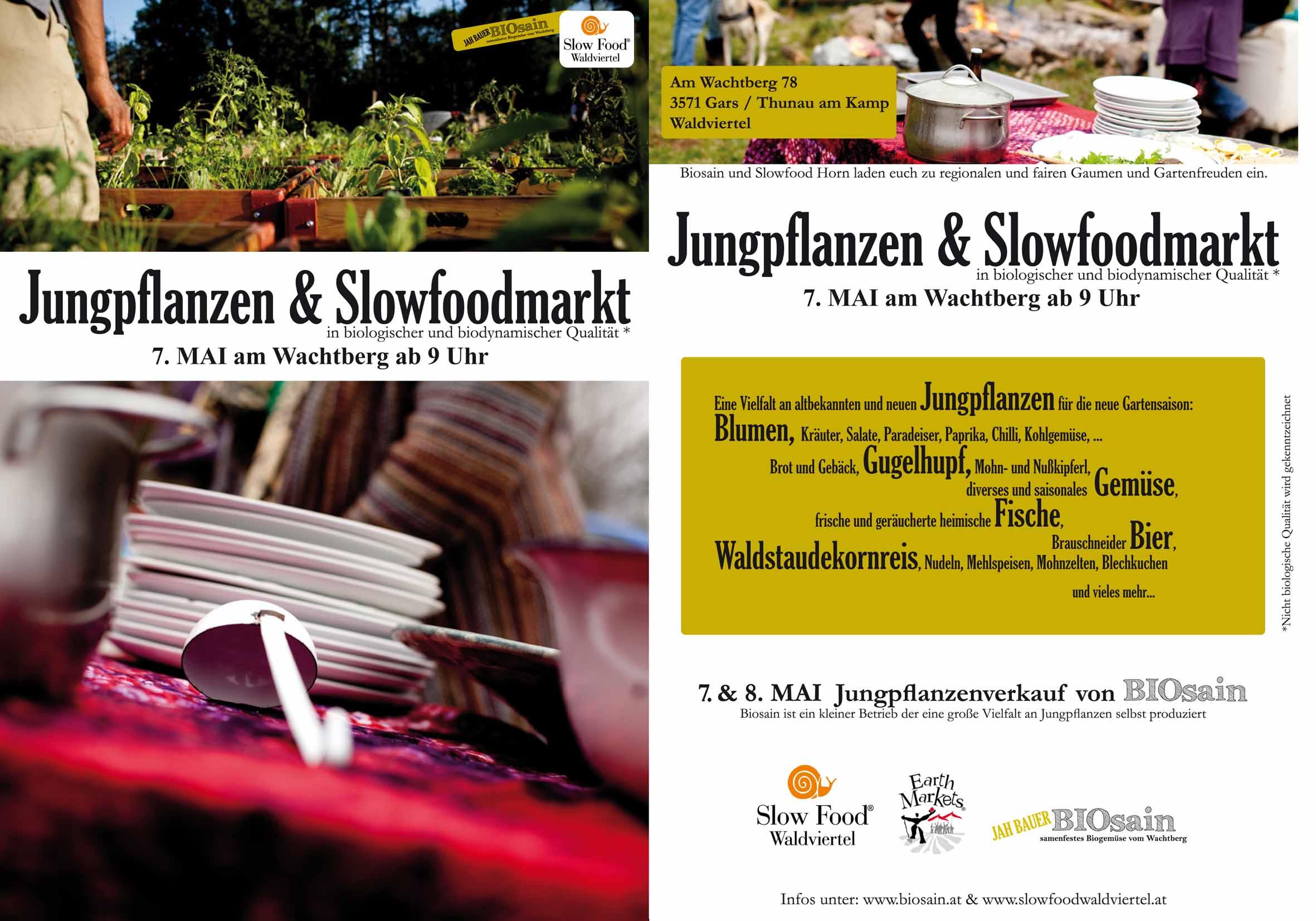 flyer_jungpflanzen2016_online-3