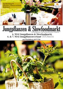 flyer_jungpflanzen_20_3_2017_1