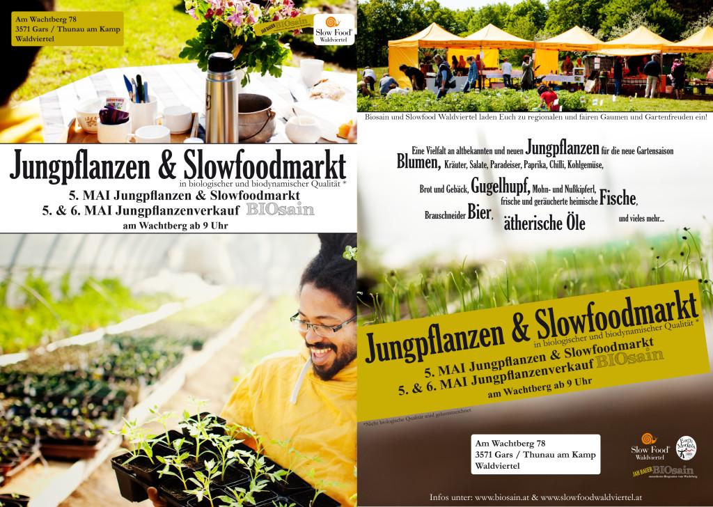 flyer_jungpflanzen_markt_2018-1